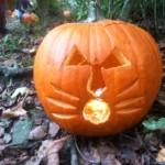pumpkin-carve-3