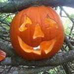 pumpkin-halloween-8