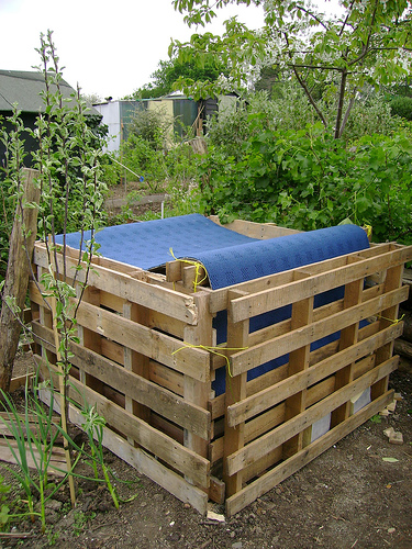 London Permaculture / Flickr