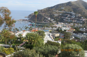 47th_Birthday_At_Catalina_Island_-_2013_040