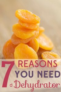 Use a food dehydrator to make delicious dried fruits and more! Here are 7 reasons you need a dehydrator NOW.