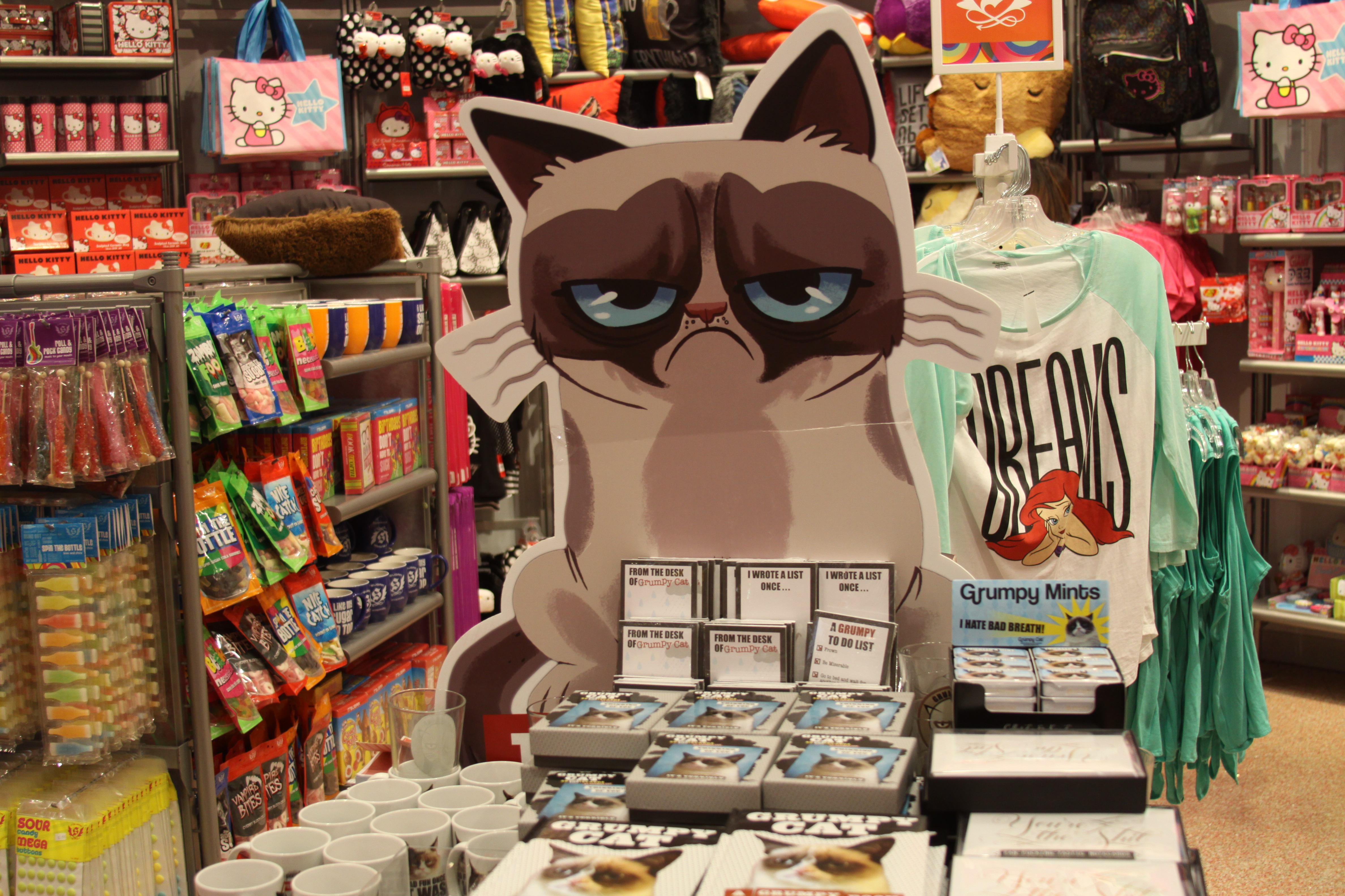 Make Your Cat Famous Like Henri Le Chat Noir Nyan Cat