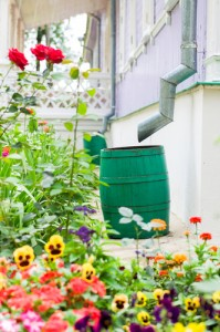 Would you use a rain barrel? Via Shutterstock.