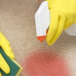 18 Cheap and Easy Ways to Remove Blood Stains