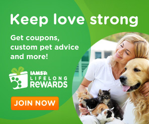 Iams Special Offers and Coupons!