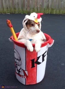 Bucket o' Chicken by Costume Works