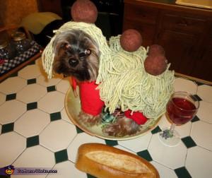 Spaghetti and Meatballs via Costume Works
