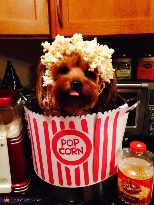 Pup Corn via Costume Works & 10 Hilarious Dog Costumes You Can Make On a Budget