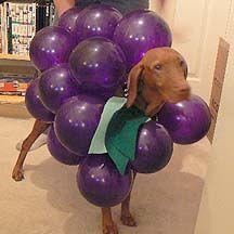 Bunch o' Grapes via Instructables.com