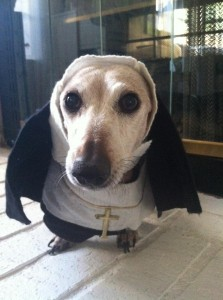 Sister Mary Daisy in her Nun Costume