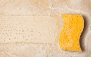 Sponges-shutterstock_109239731 (1) copy