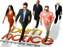 TODAY ONLY! Burn Notice Complete Series 67% Off!
