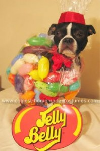 Jelly Beans via Coolest Pet Costumes