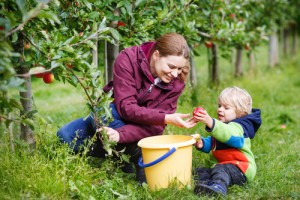 Apple picking is  one of my favorite fall activities. What's yours? Via Shutterstock.