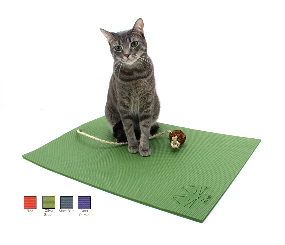 12 Cat Toys And Gifts For National Cat Day