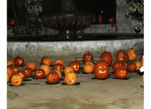 Cluster o' pumpkins