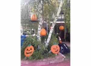 Hanging Pumpkins 2