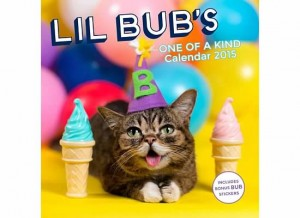 Lil Bub's One of a Kind Calendar