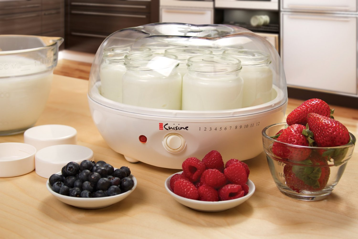Highly Rated Euro Cuisine Yogurt Maker Only $21.99 (Regularly $49.99 – Best Price!)
