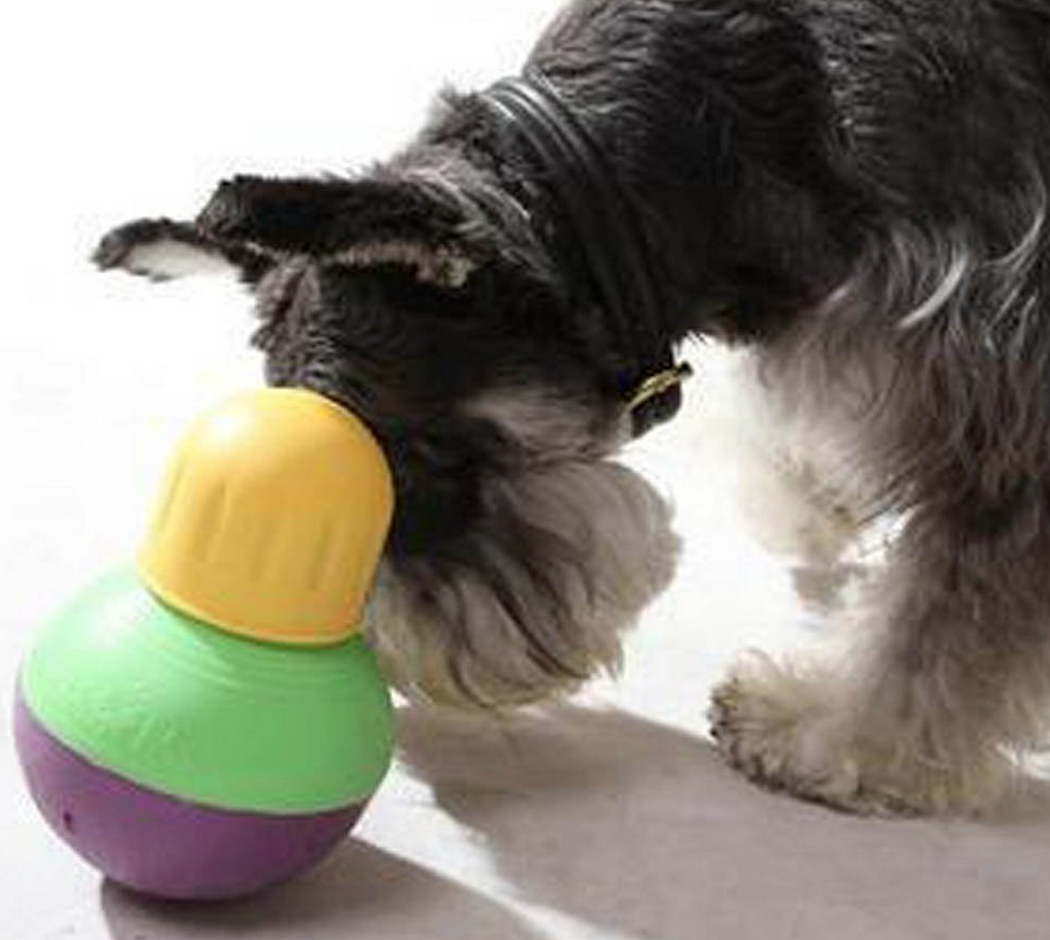StarMark Bob-A-Lot Interactive Dog Toy Only $9.97 (Reg. $14.99!)