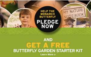 Score a FREE Butterfly Garden Starter Kit today.