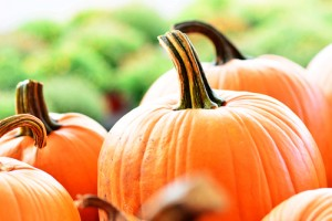 Score a FREE pumpkin today! Via Shutterstock.