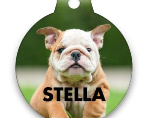 Tuesday Freebies – Free Personalized Pet Tag