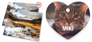 Score a FREE pet tag or 16X20 photo print today!