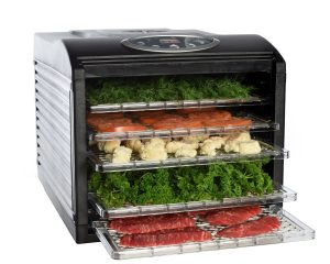 Ivation Electric Countertop Food Dehydrator only $79.99!