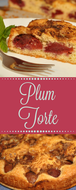This delicious Plum Torte is deceptively simple. With just a few ingredients and little prep time, this is sure to become a summer favorite!