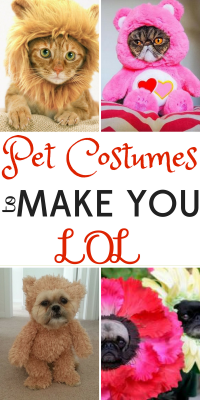 pet-costumes-lol-2