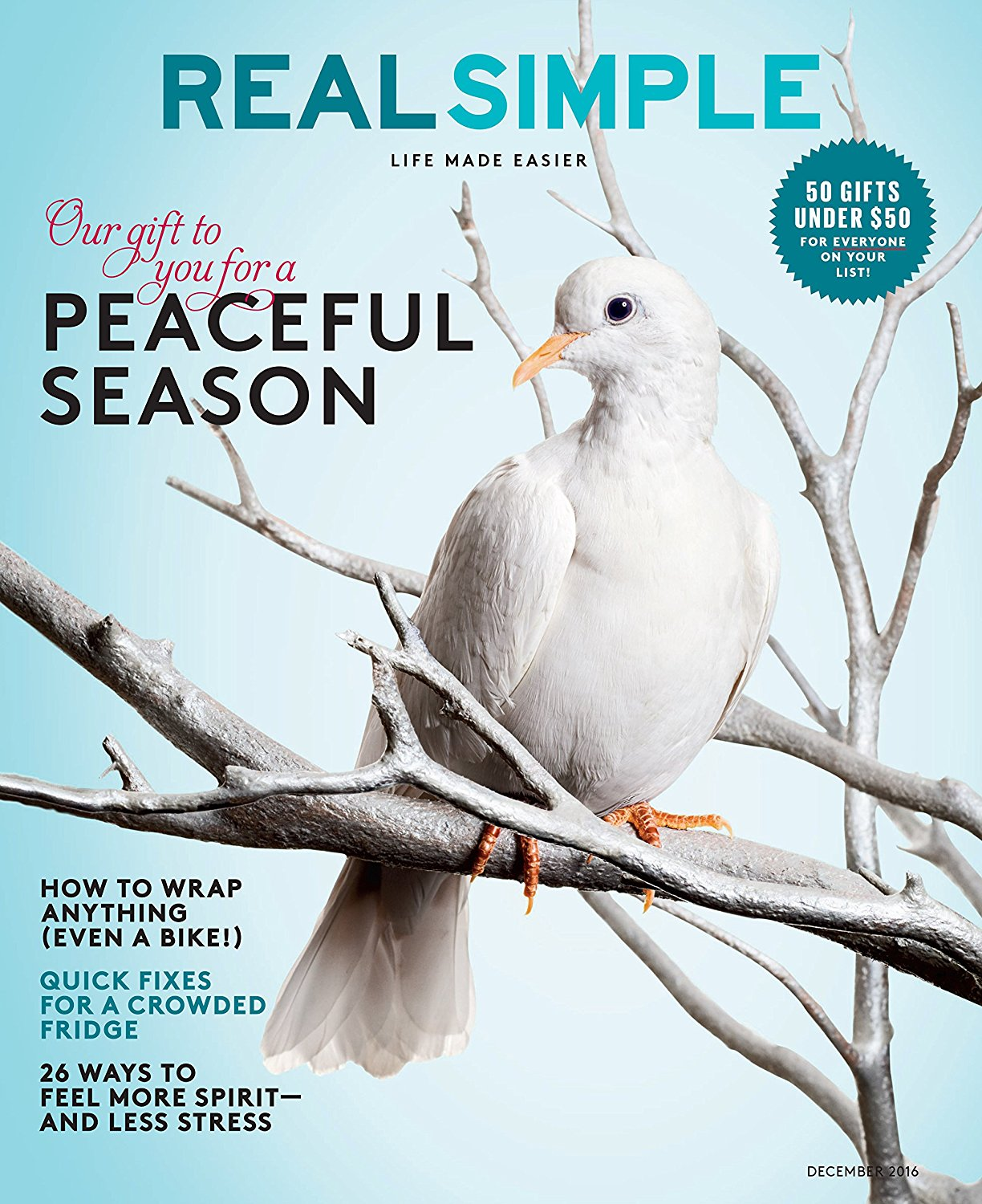 real simple magazine subscription only 5