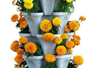 5 Tier Stackable Planter for Indoors or Outdoors $29.97