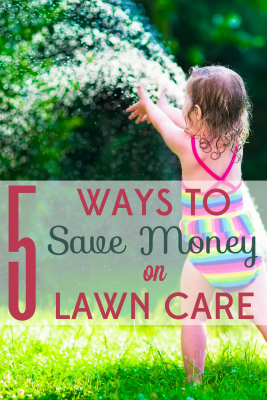 Spring is coming . . . is your lawn ready? We've got tips for getting your yard prepped for the new season without spending a lot of green.