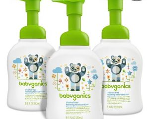 Babyganics Alcohol-Free Hand Sanitizer 3 pack $8.52
