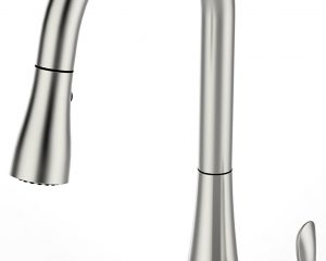 FLOW Faucet by BioBidet $169.99