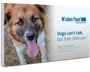 Mars Veterinary Wisdom Panel 3.0 Breed Identification DNA Test Kit Only $54.37!