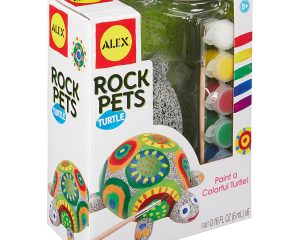 Alex Craft Set: Turtle Rock Pet $6.68