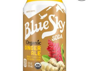 Blue Sky Organic Ginger Ale pack of 24 $13.92