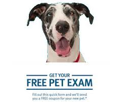 Friday Freebies-Free Pet Exam from Banfield Pet Hospital!