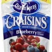Ocean Spray Craisins, Blueberry, 6 Ounce (Pack of 12) $5.41
