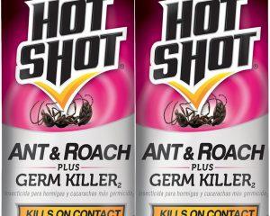 Hot Shot Ant & Roach Plus Germ Killer 2 Pack $4.88