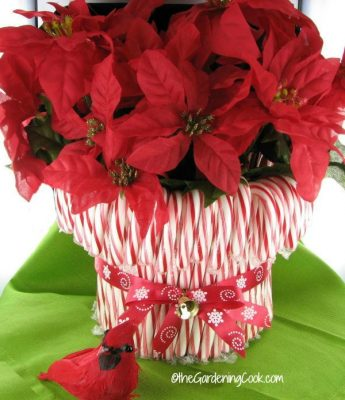 candycanevase1Bring in the holiday spirit with these cheap and easy (and pretty!) Dollar Tree decor ideas! No one will ever guess how little you spent!