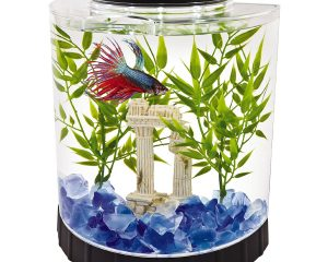 Tetra LED Half Moon Betta Aquarium, Betta Fish Tank (29049) $9.89