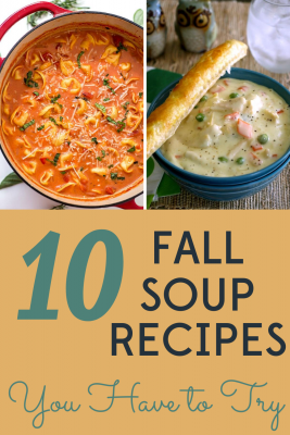 It's finally fall and we are ready for soup! We've got 10 easy, healthy, and frugal fall soup recipes to welcome the cooler weather.