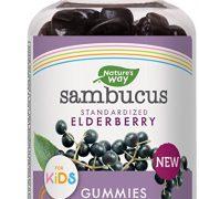 NATURE'S WAY SAMBUCUS ELDERBERRY GUMMIES FOR KIDS $9.98