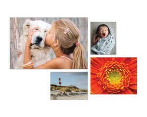 Tuesday Freebies-Free 50 4×6 Prints from Sam's Club