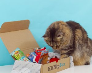 KitNipBox – Monthly Cat Subscription Box of Cat Toys, Treats and Goodies: Happy Cat