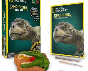 NATIONAL GEOGRAPHIC Dino Fossil Dig Kit Only $5.99